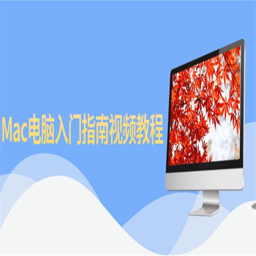 超详细Mac电脑入门指南视频教程